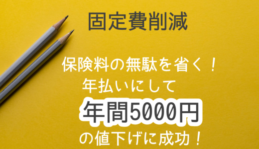 【固定費削減】保険料を年払いに変えて5000円削減!