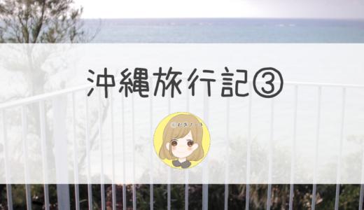 【旅行】2歳半+妊娠7か月の沖縄旅行記③